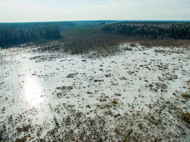 Kauno rajone plyti 120 ha ploto apimanti Dubravos rezervatinė apyrubė. Norint išsaugoti retas miško augalų rūšis ir spygliuočius, ji įsteigta 1994 m. Įdomu, kad saugoma ši teritorija jau gerus penkis dešimtmečius, todėl čia galima išvysti pusšimtį be žmogaus prisilietimo augantį mišką. 2005 m. Dubravos rezervatinėje apyrubėje įrengtas apie 2 km vingiuojantis pažintinis takas su informaciniais stendais, norintiems susipažinti vietine flora ir fauna.