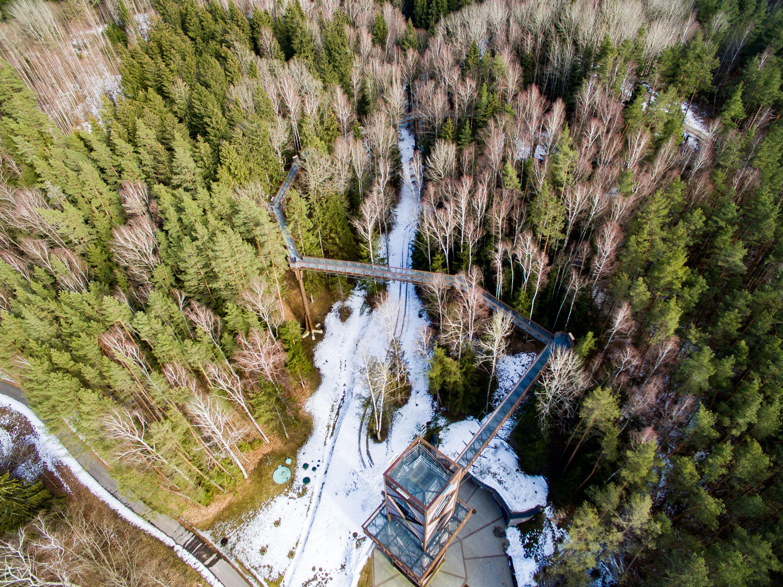 """Per mėnesį pavasaris Lietuvoje dar nespėjo įsitvirtini. Dar daug kur matyti žiemos likučiai. Žvelgiant nuo vieno populiariausių Anykščių objektų – Medžių lajų tako – dar matyti sniego patalų, tačiau pavasariškai nuteikia saulės apšviesti miškai, Šventosios upės vingiai.Medžių lajų takas vingiuoja apie 300 metrų. Neįprastas tuo, kad """"įtaisytas"""" medžių viršūnėse – 21 aukštyje, o pasigrožėti nepakartojamu reginiu lankytojai gali nuo 34 metrų aukštyje esančios apžvalgos aikštelės."""