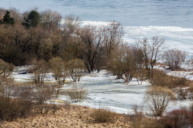 Netonių kaimelis plyti dešiniajame Nemuno krante, ant upės šlaito. Čia galima rasti ir populiaresnį kaimelio objektą – Netonių kalną, nuo kurio atsiveria puikus reginys į tolius.Upės vingiai, neaprėpiami rudi laukai, dangaus mėlynė, vienišas takas, ledo ruožai ir sniego likučiai – visa tai susilieja į puikų reginį žiemiškai pavasarišką reginį.