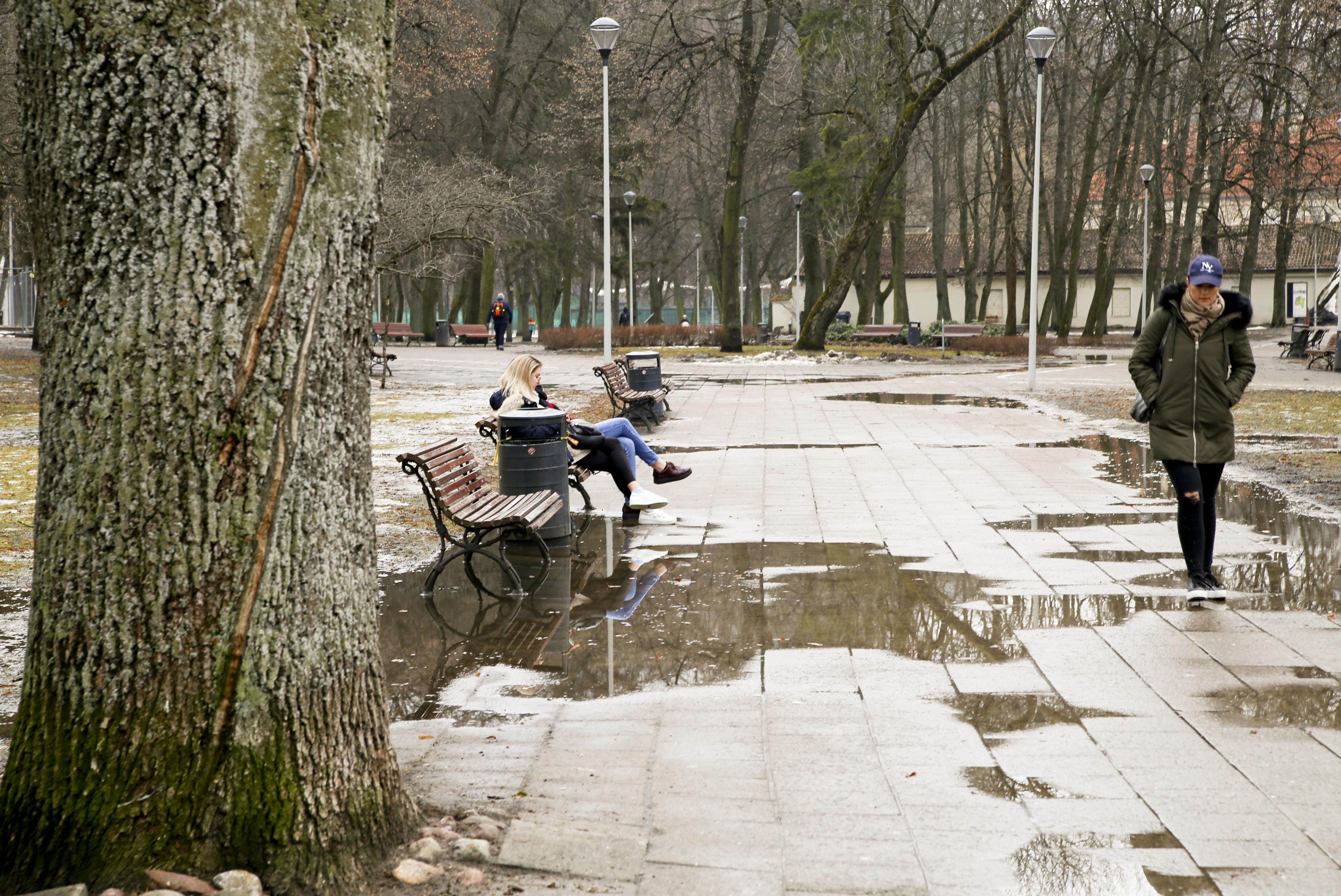 Pavasario saulė šildo vis intensyviau. Tirpdo ledus ir vis labiau išlaisvina Nerį. Vis dažniau jos pakrante praskuodžia bėgikai, daugiau ir išsiruošusių ilgesniam pasivaikščiojimui, kurį palydi ančių ir gulbių klegesys. Kompanijos jau sulaukia ir sodų bei parkų suoliukai. Nesvarbu, kad baltų žiemos likučių dar matyti. Žalių, iš sniego gniaužtų išsivaduojančių plotų – vis daugiau.