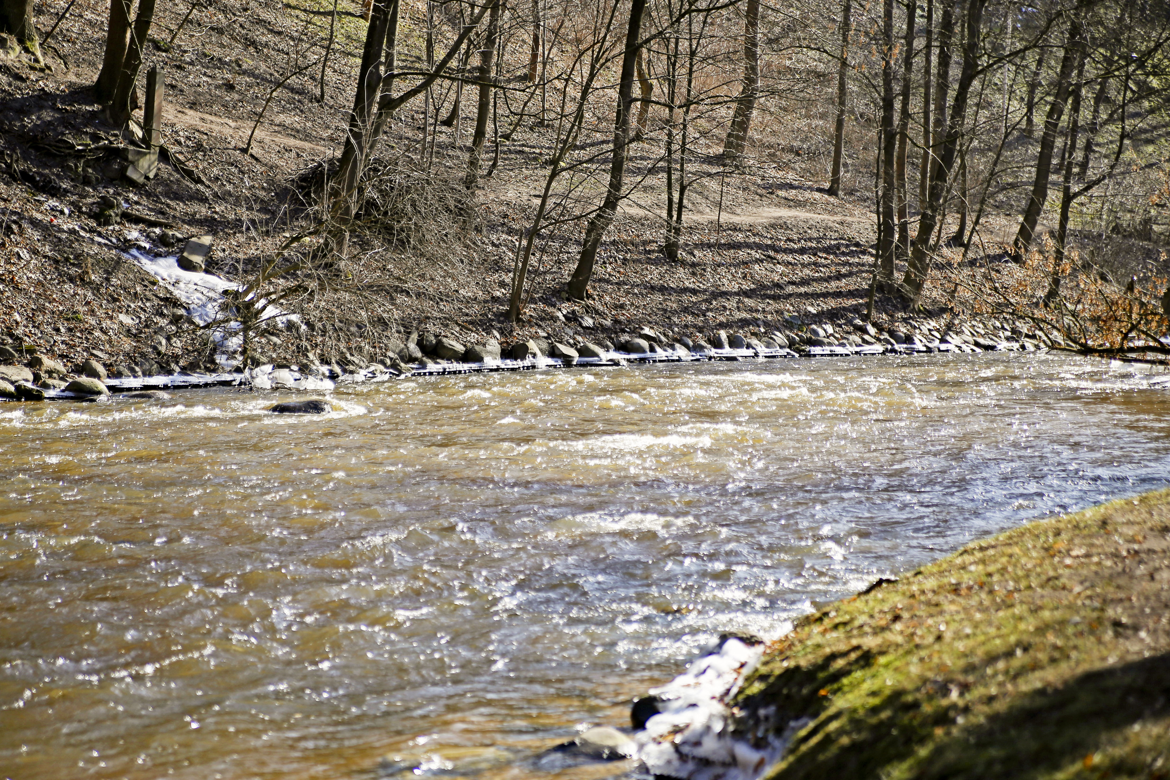 Šilumos išsiilgęs miestas – nuo ramių parko praeivių, sustojančių bent sekundę pasišildyti, saulės spinduliuose besimaudančių šunų ir šaltame vandenyje besiturškiančių ančių. Geltonos spalvos atspalviais nudažomas miestas atgyja akimirksniu. Paukščių klegesys, garsesnis upės čiurlenimas, praeivių juokas, gyvesni medžiai ir gausėjantis dviratininkų būrys.