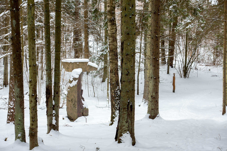 Daugiausia Švenčionių rajone plytintis Sirvėtos regioninis parkas – viena iš puikių krypčių žiemiškam pasivaikščiojimui. Šaltuoju metų laiku tiek ilgaamžiai draustinio ąžuolai, tiek upeliai ir miškų masyvas atskleidžia kitokį grožį. Regioninio parko lankytojų itin pamėgtas ir kiek daugiau nei 1 km vingiuojantis mokamas mitologinis pažintinis takas – galimybė gamtos apsuptyje susipažinti su medinėmis ar iš riedulių suręstomis skulptūromis.