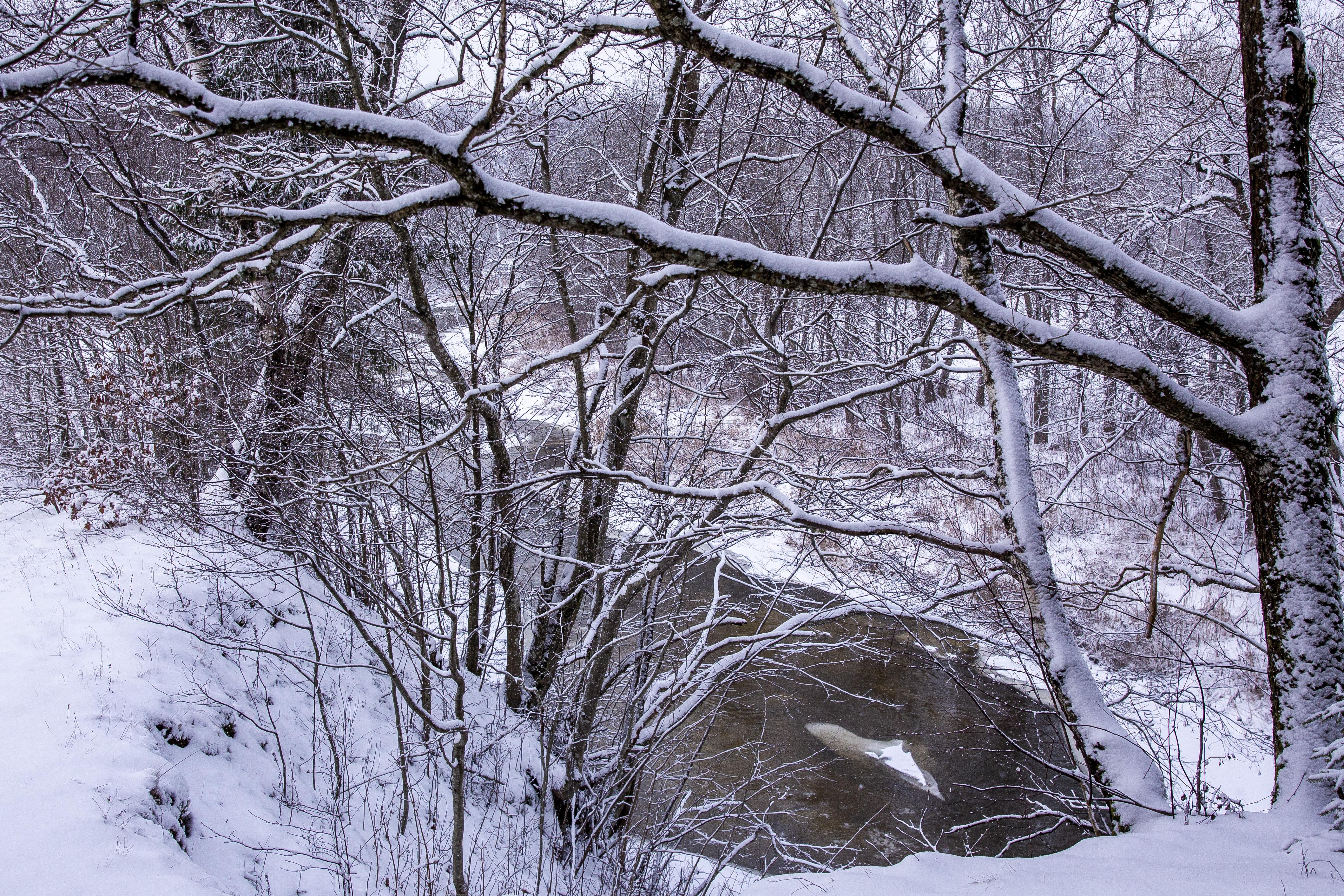 """Vargu ar atrastumėte kitą upę, darančią tiek vingių vingelių, kampų, apylankų ir kilpų, kaip Akmena. Atrodo, kad kažkas šiai mažylei vis trukdo pasiekti tikslą ir ji turi kažkaip išvengti gausybės kliūčių savo kelyje. Ten, kur Akmenos vargai baigiasi ir ji įsijungia į daug stipresnės ir didesnės Jūros (dar ne Baltijos jūros, o upės) vandenis, įsikūręs Pagramančio regioninio parko lankytojų centras. Čia sužinosite, ką pamatyti tarp upių vingių, piliakalnių viršūnių ir kaip trumpam grįžti į Lietuvos laisvės kovotojų laikus. Pagramančio regioninio parko vyriausiasis ekologas Tomas Kalašinskas pasakoja, jog visiškai naujai įrengtoje ekspozicijoje šiuo metu atliekami paskutiniai darbai ir jau vasario mėnesį lankytojai galės ją išbandyti. Čia bus galima pažaisti interaktyvius žaidimus, pamėginti atpažinti parko drugius, paukščių balsus, pratempti žymeklį raitytais Jūros upės modelio vingiais nepaliečiant krantų – o tai ne taip lengva, kaip gali pasirodyti iš pirmo žvilgsnio! """"Ekspozicija bus labai šiuolaikiška, interaktyvi – su daugybe įvairios informacijos, panoraminiais vaizdais iš mūsų parko"""", – sakė T.Kalašinskas. Jei planuojate Pagramančio parką aplankyti vasarą, įsiminkite """"Lakštingalų slėnio"""" pavadinimą. Tai – maždaug 3 hektarų ploto įspūdingai sutvarkyta stovyklavietė su laužavietėmis, pavėsinėmis, tilteliais. Itin patogu tai, kad iš stovyklavietės prasideda ir joje baigiasi vaizdingas Akmenos upės pažintinis takas. Atvykstant su didele kompanija šioje stovyklavietėje galima netgi išsinuomoti namelius nakvynei. """"Akmenos pažintinis takas prasideda perėjus per vieną kabantį tiltą ir baigiasi kitu kabančiu tiltu. Eidami juo galite gėrėtis kraštovaizdžiu, palypėti laiptais aukščiau ir vėl nusileisti. Pamatysite stačius upės šlaitus, Akmena – šaltavandenė, daug siaurėsnė upė. Jos vingiai – labai statūs, maži"""", – pasakojo T.Kalašinskas. Abi regioninio parko upės – labai vingiuotos. Todėl vyriausiasis ekologas rekomenduoja jas pažinti plaukiant baidarėmis – 10 jų turi ne"""