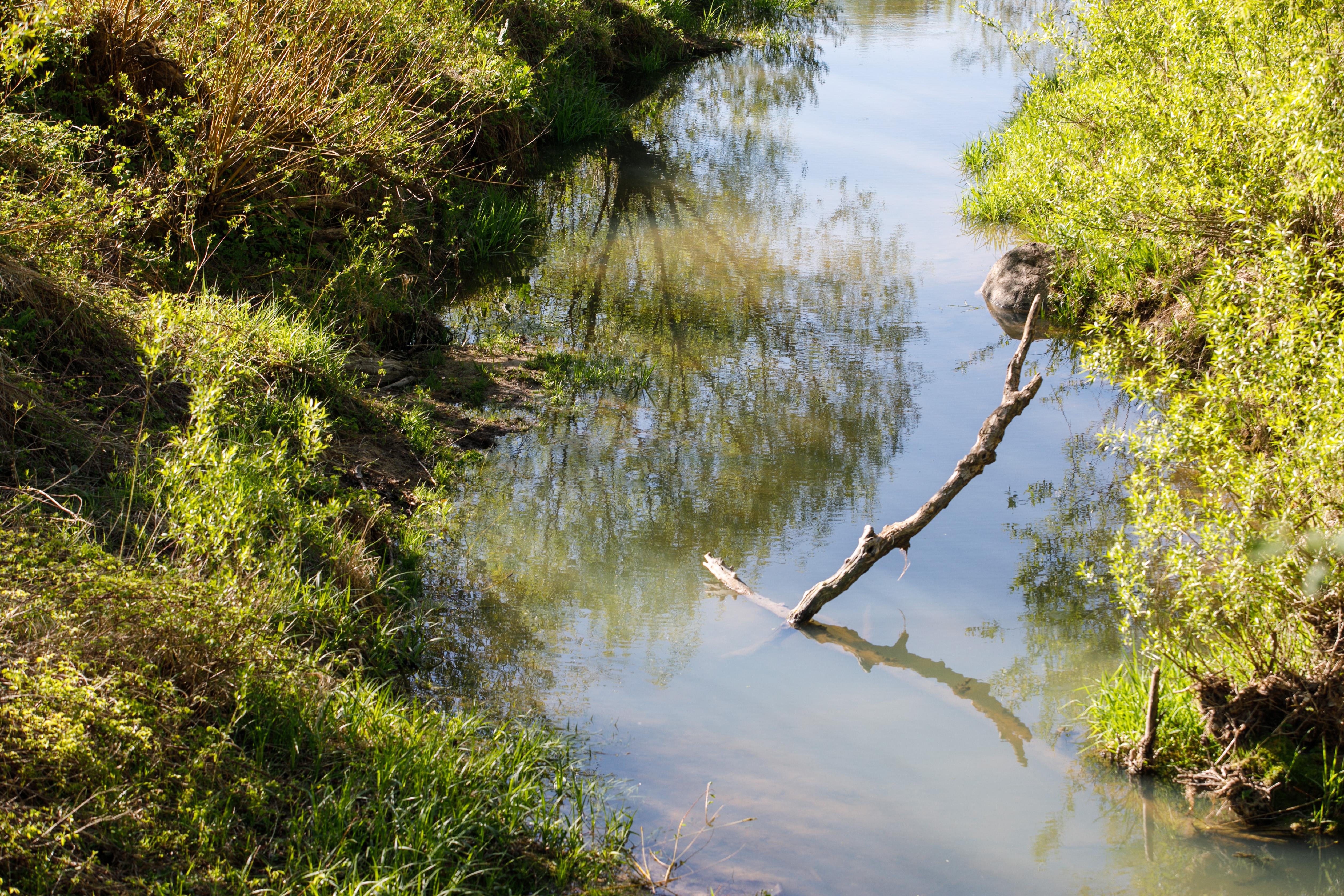 Seredžių, Plokščius, Gelgaudiškį ir Jurbarką Nemunas maitino ilgus metus. Link šio upių tėvo vedančiuose slėniuose auga galingi skroblai, peri reti paukščiai. Atvykę čia balandžio pabaigoje – gegužės pradžioje arba per kokį nors vietos miestelio renginį, tikėtina, gausite paragauti ant smaigų pamautų ir lauže iškeptų žiobrių – šios žuvelės yra Panemunių krašto delikatesas.