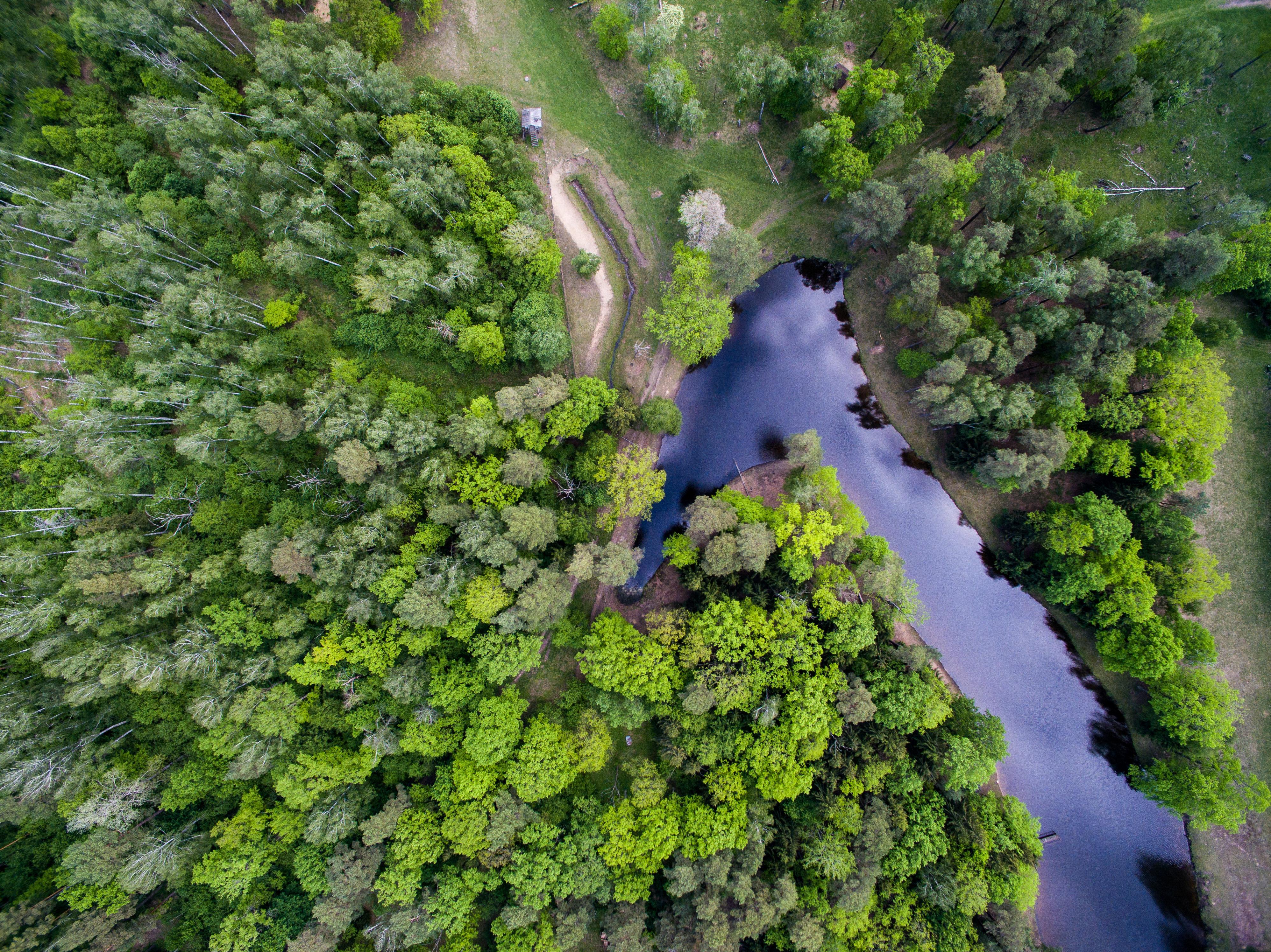 Krekenavos regioninis parkas įkurtas saugoti Nevėžio upei ir anksčiau jos sukurtoms senvagėms. Senvagėmis galite pasigrožėti nuo apžvalgos bokšto, o upės šlaituose auga keliasdešimt saugomų augalų. Šiose teritorijose ganosi ir nedidelė stumbrų banda.