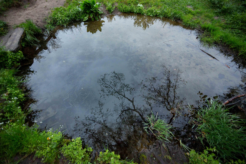 Tokia nedidukė Lietuva skirstoma į keturis regionus. O linksmieji dzūkai vieni kitus dar skirsto į šilo dzūkus (kuriuos maitino miškas), panemunės dzūkus (kuriuos maitino Nemunas, Merkys ir sielininkų veikla) ir įprastus – tuos, kurie užsiėmė žemdirbyste. Dzūkijos nacionalinis parkas vadinamas upių ir upelių regionu – čia stebina ne tik įspūdinga gamta, tačiau ir šimtmečius čia gyvenusių nenuoramų žmonių istorijos.