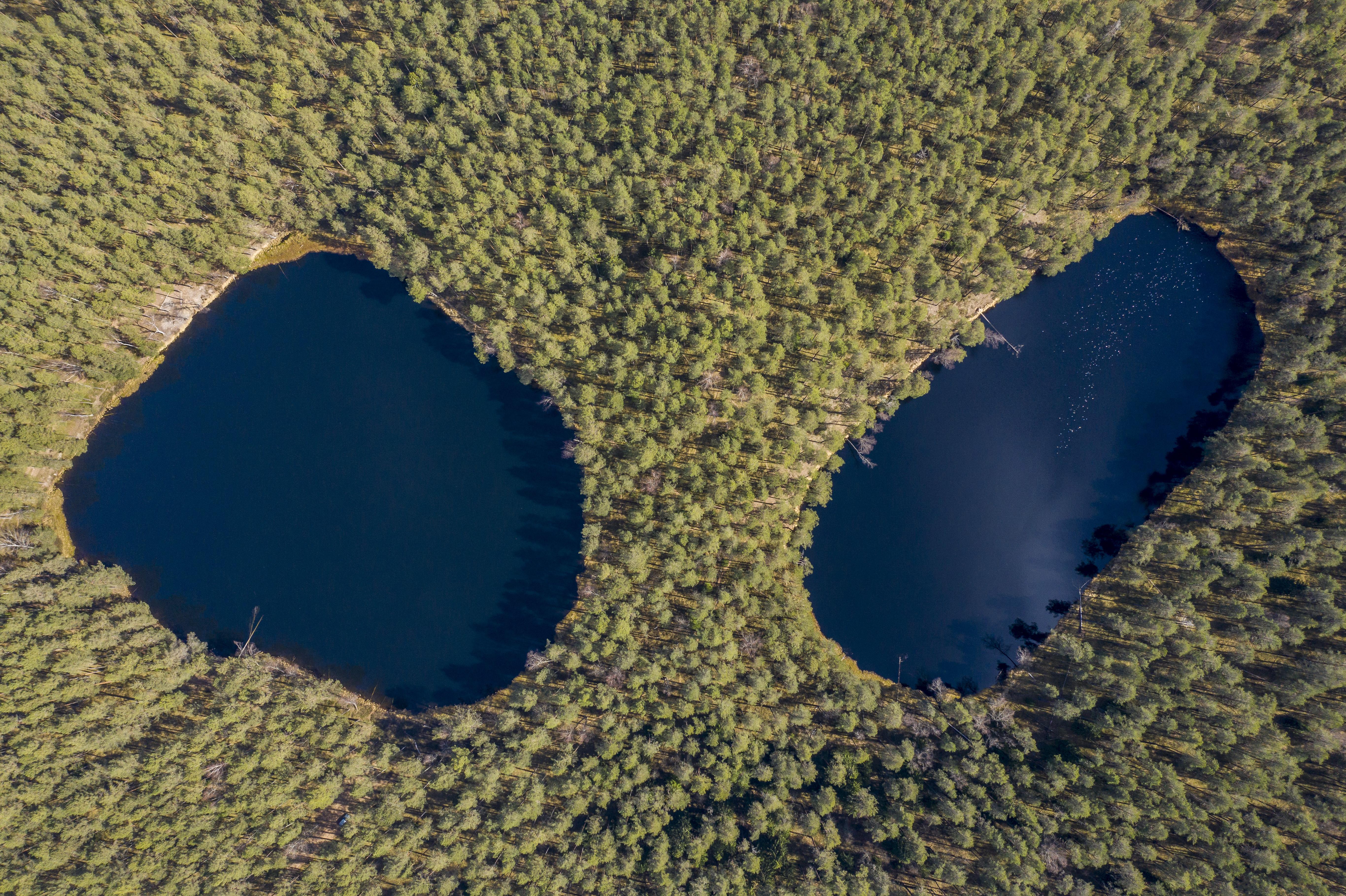 Aukštaitijoje ežerai turi akis, miškai – taip pat, o upės vingiuoja ir raitosi taip, kad baidarininkams tenka visą kelią neprarasti budrumo. Praslinkęs ledynas paežerėse paliko daugybę kopagūbrių, o vienas šykštus miškininkas, gailėjęs kirsti savą mišką ir pavedęs tai verčiau daryti kitoms girininkijoms, davė pradžią rezervatui ir išsaugojo vieną iš nedaugelio Lietuvos sengirių.