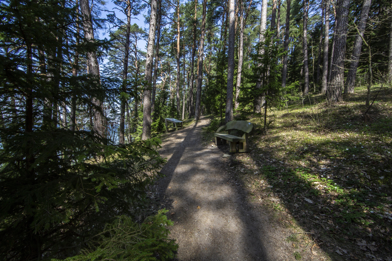 """Vištytis – tai ežeras, kurį """"dalinasi"""" Lietuva ir Rusija. Jis dar vadinamas """"Europos Baikalu"""". Vištyčio regioninio parko stegimo tikslas – išsaugoti Suvalkų kalvyno kraštovaizdį, jo gamtinę ekosistemą bei kultūros paveldo vertybes. Vištyčio regioninio parko lankytojų centre pristatomos svarbiausios regioninio parko vertybės bei padavimais ir legendomis apipintos bei šventomis laikomos parko vietovės."""